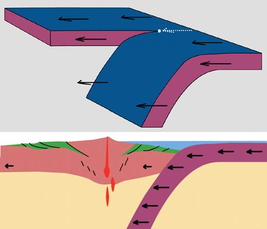 Structure of Andean arc oriented to correspond to polarity of Tonga subduction zone; view is to north. Green denotes forearc and foreland sedimentary basins. Black lines are thrust faults near surface and shear zones at depth. Red denotes magmatism.