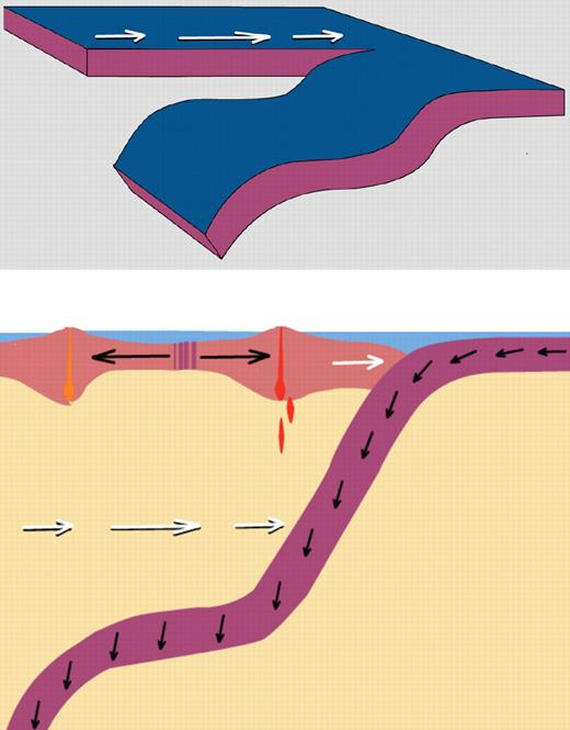 Model 5. Foundered flat slab (see text for discussion). White arrows denote velocity of trench rollback; red denotes magmatism.