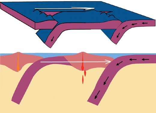 Model 6. Subduction step back. Subduction initiates in west, then steps instantaneously to east (oceanward; see text for discussion). Red denotes magmatism; white arrows denote velocity of trench rollback.