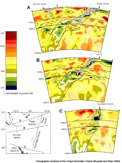 Seismic tomography of Tonga-Kermadec slab, reproduced from Mussett and Khan (2000). Note mid-mantle flat slab developed in north but not in south.