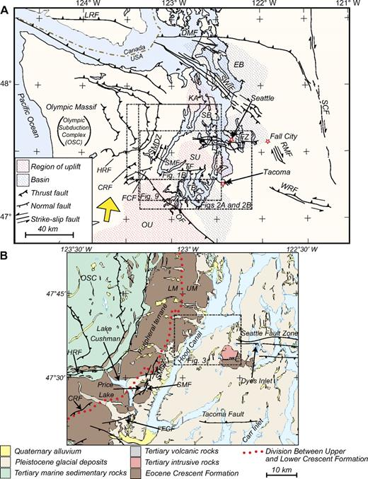 (A) Map modified from Blakely et al. (2009) showing the tectonic setting of the Puget Lowland and Olympic Peninsula. The yellow arrow shows the regional direction of strain relative to North America (McCaffrey et al., 2007). This strain causes north-south compression that is buttressed by the stable Canadian craton and results in 4.4 ± 0.3 mm/yr of permanent shortening being accommodated across the Puget Lowland region. FCF—Frigid Creek fault; HRF—Hurricane Ridge fault; OF—Olympia fault; OU—Olympia uplift; SB—Seattle Basin; SF—Seattle fault; SMF—Saddle Mountain East and Saddle Mountain West faults; SMDZ—Saddle Mountain deformation zone; SU—Seattle uplift; TB—Tacoma Basin; TF—Tacoma fault. Other regional faults not referred to in this research but shown in Figure 1: CRF—Canyon River fault; DMF—Devils Mountain fault; EB—Everett basin; KA—Kingston arch; LRF—Leech River fault; RMF—Rattlesnake Mountain fault; SCF—Straight Creek fault; SWIF—southern Whidbey Island fault; WRF—White River fault. (B) Geological map modified from Schuster (2005) and Blakely et al. (2009).