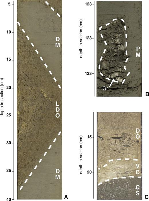 Examples of sedimentary structures. Depth in centimeters. LDO—laminated diatom ooze; DM—diatom mud; VC—volcaniclastic layer; PM—pelagic mud; CS—coarse siliciclastic layer; Gr—gravels. (A) Chevron folding produced by soft sediment deformation at Site 1340 (U1340A-3H-7A); the yellowish, coarser-grained laminated layer is foraminifer-rich diatom ooze and the gray layer is pelagic mud. (B) Example of dropstones (pebble-size, angular granite fragments) at Site 323-U1339D-21H-2 (123–136 cm). (C) Sharp contact between a dark gray volcaniclastic sand layer (bottom) and brown diatom ooze (top); a white ash bed (middle) marks the boundary (Site 323-U1340A-64H-4A).