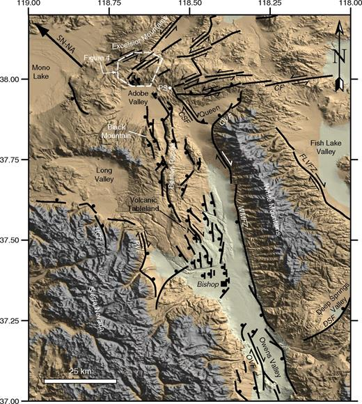 Shaded relief map of the southern part of the Mina deflection and northern part of the eastern California shear zone showing the major Quaternary faults. Solid black ball is located on the hanging wall of normal faults; arrow pairs indicate relative motion across strike-slip faults. Heavy arrow in northwest corner of map shows the present-day motion of the Sierra Nevada (SN) with respect to North America (NA) (Dixon et al., 2000). Location of the Adobe Hills geologic map shown in Figure 4A is outlined with a dashed line and location of this map is shown in Figure 1. PS—Pizona Springs; CF—Coaldale fault; CSF—Coyote Springs fault; DSF—Deep Springs fault; FLVFZ—Fish Lake Valley fault zone; HCF—Hilton Creek fault; OVF—Owens Valley fault; QVF—Queen Valley fault; RVF—Round Valley fault; WMFZ—White Mountains fault zone.
