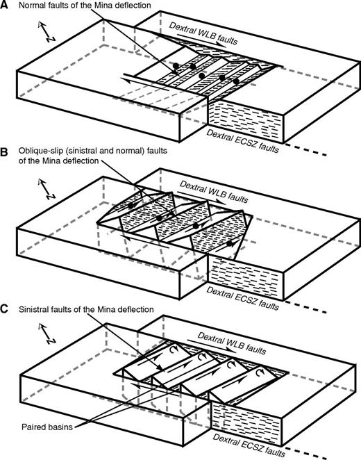 Block diagrams illustrating models proposed to explain fault slip transfer across the Mina deflection. (A) Displacement transfer model in which normal slip along connecting faults transfers fault slip (modified from Oldow, 1992; Oldow et al., 1994). (B) Transtensional model showing a combination of sinistral and normal slip along connecting faults. (C) Clockwise block rotation model in which sinistral slip along connecting faults, combined with vertical axis rotation of intervening fault blocks, transfers fault slip (modified from McKenzie and Jackson, 1983, 1986). Single-barbed arrows show dextral fault motion across faults of the Eastern California shear zone (ECSZ) and Walker Lane belt (WLB) and sinistral motion along faults in the Mina deflection; half-circle double-barbed arrows indicate clockwise rotating fault blocks; solid ball is located on the hanging wall of normal slip faults; thin short lines indicate slip direction on fault surfaces.