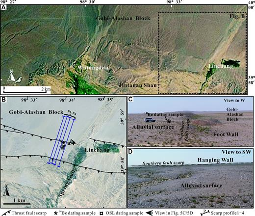 Geomorphic and field map of the Jintanan Shan fault. (A) Enhanced Thematic Mapper (ETM) image displaying fault scarps and local structures at the middle segment of the fault. Black dashed square locates B. (B) High-resolution Thematic Mapper (TM) image at the studied area of the Jintanan Shan fault. Shown are four ∼1-km-long scarp profiles (purple lines), as well as the sample locations (* for the 10Be sample; ¤ for the optically stimulated luminescence [OSL] sample), and orientations of photos in C and D. (C and D) Field photographs of the alluvial surfaces and the thrust fault scarp. (C) View of the northern fault scarp and the offset alluvial surface. (D) View of the southern fault scarp on the hanging wall. Note the importance of a flat remnant of the alluvial surface between the scarps, allowing a precise topographic survey.