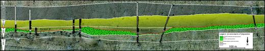 Interpreted aerial image of Waterford clinothem (WfC) 4 at the Blockhouse section showing broad shallow gullies cutting down into the top surface. Gullies have been later filled by WfC 5 material.