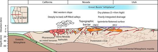 Conceptual east-west cross-section though the middle Cenozoic orogenic plateau, or Great Basin altiplano, at ∼38.5° N showing the unusually thick crust, especially beneath the Indian Peak–Calieinte caldera complex (IPCC). The crust probably was somewhat thinner beneath the Central Nevada caldera complex (CNCC) and thinner still farther west on the western slope of the altiplano beneath the Western Nevada volcanic field. The western Great Basin is underlain by Phanerozoic accreted terranes whereas the eastern part is underpinned by felsic Proterozoic basement. Note the change in vertical scale at sea level. Figure modified from Best et al. (2009, their figure 17).