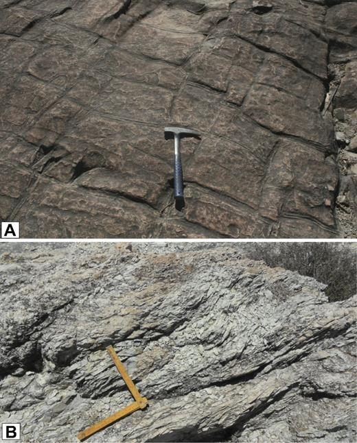 (A) Orthogonal fracturing observed along the inner margin of Peña de Bernal dome, near the intrusive contact with the country rock. Peña de Bernal dacite at its margin is fractured but not brecciated. (B) Plane view of the intensively sheared border zone of Peña de Bernal dacite next to the contact with the country rock caused by forceful intrusion (ruler for scale is 20 × 20 cm).