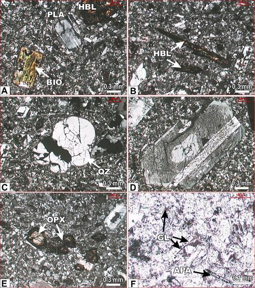 Representative photomicrographs of Peña de Bernal dacite, all with crossed polarizers (except F). (A) Phenocrysts of plagioclase (PLA), hornblende (HBL), and biotite (BIO) in a microcrystalline + glass matrix. (B) Large crystals of acicular hornblende (HBL) partly oxidized. (C) Phenocryst of rounded quartz (center). (D) Large phenocryst of plagioclase showing complex oscillatory zoning and fritted zones. (E) Euhedral crystals of orthopyroxene with oxidized rims. (F) Accessory apatite (APA) and glass patches between matrix crystals. Graphic scales in mm and microns indicated in each photograph.