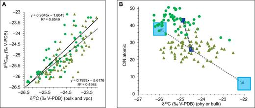 (A) Carbon-isotope composition of phytoclasts (δ13Cphy) versus bulk organic matter (δ13Cbulk, triangles) and calculated vascular plant debris (vpc) (δ13Cvpc, dots) (V-PDB—Vienna Peedee belemnite). Correlation between δ13Cphy and δ13Cvpc is stronger (slope = 0.93, r2 = 0.65) than between δ13Cphy and δ13Cbulk (slope = 0.79, r2 = 0.50), showing that the bulk composition predominantly is a result of mixing between terrestrial and marine end members. (B) Atomic C/N ratios versus δ13C of marine and terrestrial organic matter. Measured composition of phytoclasts (green dots) and bulk organic matter (green triangles) are from marine sediments at Site 29. Light blue boxes represent modern end members of vascular plant debris and marine organic matter, where shallow marine sediment samples exhibit a linear mixing between end members (Hedges et. al., 1997). The model average mixing line between Miocene end members (dark blue boxes) results in the best fit between observed phytoclast composition and corrected bulk composition calculated from bulk organic matter. The model mixing line uses end-member compositions of phytoclasts (C/N = 43, δ13C = –24.9‰) and bulk organic matter (C/N = 26, δ13C = –24.5‰) (see Table 1 for equations governing correction). The projected Miocene marine organic matter carbon-isotope value is inferred to have been significantly lighter than for the modern case.