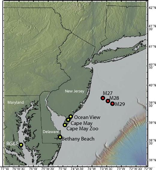 Location map of sections investigated for diatom biostratigraphy (see text).