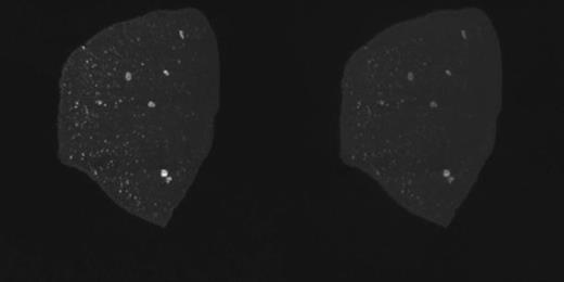 Individual slice animation for 29.2-µm-resolution data sets of carbonado acquired with X-rays set at 40 kV (left) and 140 kV (right). Patinaed side of specimen is on right side of images. Images are 17.9 mm wide (1224 × 612 pixels; 6.0 MB). If you are viewing the PDF of this paper or reading it offline, please visit http://dx.doi.org/10.1130/GES00908.S2 or the full-text article on www.gsapubs.org to view Animation 2.