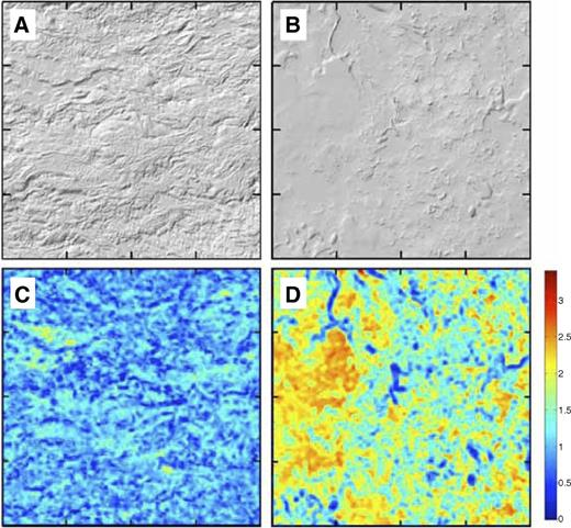 Surface analysis of 1 km × 1 km patches of lava flows from Sand Mountain and the Owyhee River, Oregon. (A) Lidar (light detection and ranging) hillshade of the ca. 3 ka basaltic andesite lava flows from the Sand Mountain volcanic chain, central Oregon Cascades. (B) Lidar hillshade of the West Crater lava flow, eastern Oregon. (C) Surface roughness analysis of A. (D) Surface roughness analysis of C. Surface roughness analysis uses methodology developed by McKean and Roering (2004). Roughness scale goes from blue (more rough) to red (more smooth). Note the significant loess infilling of the West Crater lava flow, as illustrated by the dominance of warm colors in D relative to C.