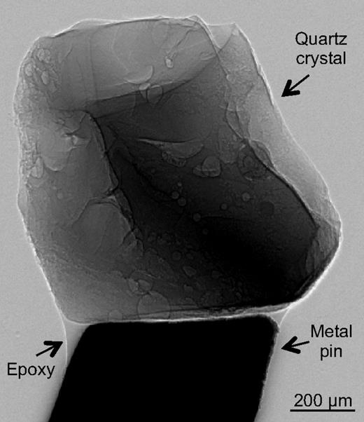 Radiograph showing sample setup for tomographic analysis. Single quartz crystals are mounted on a metal pin with a small drop of epoxy so they can be rotated during analysis.