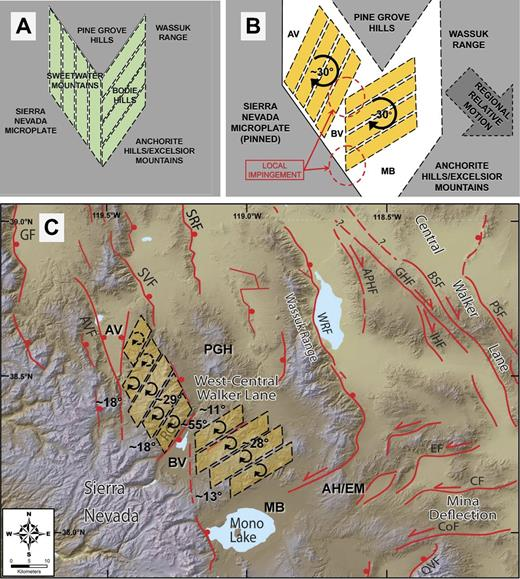 The simplified kinematic block model presented permits the formation of asymmetric valleys and regional physiography associated with vertical-axis rotation of structures in the Sweetwater Mountains and Bodie Hills. (A) Pretranstension model depicting present-day physiographic regions and incipient dextral shear–accommodating structures discussed in text. (B) Post-transtension and/or present-day model depicting rotation accommodation with Sierra Nevada microplate fixed (pinned) and nonrotating physiographic block translation to the southeast (large dashed arrow). AV—Antelope Valley; BV—Bridgeport Valley; MB—Mono Basin. (C) Regional figure of central Walker Lane with overlain study mean rotations (see Table 4), and tectonic block modified from Figure 11B. Clockwise rotation indicator within blocks dashed where inferred. Additional regional depositional basins and physiography: Anchorite Hills–Excelsior Mountains—AH/EM; PGH—Pine Grove Hills. Regional fault labels are as in Figure 2.