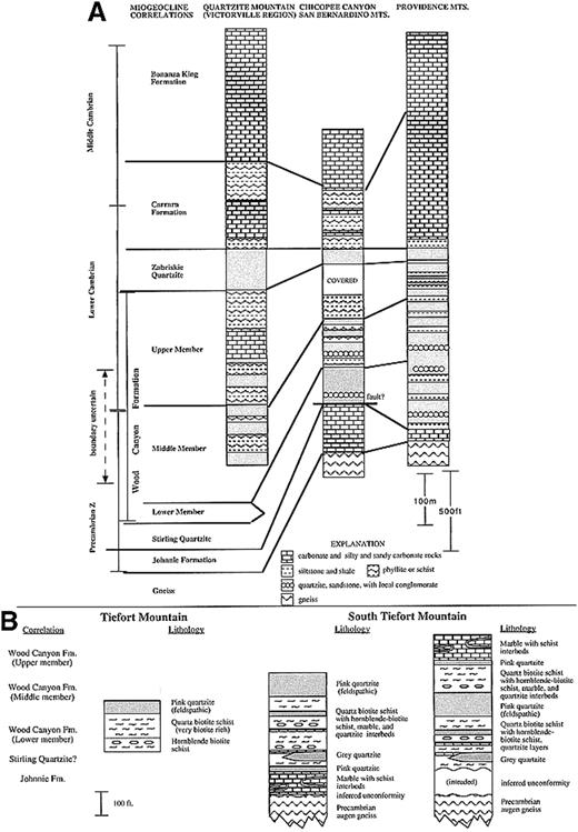 Paleogeographic And Tectonic Implications Of The Geology Of The