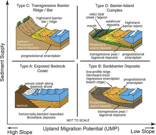 Conceptual model for highstand deposits. Shown is a generalized classification scheme for mid-Holocene highstand deposits preserved and identified along the Brazilian coastline. Drawings represent the morphologies of coastal systems ∼100 years after the mid-Holocene highstand, following the initiation of relative sea-level fall, forced regression, and shoreline progradation. These deposits fall along a continuum but can be broadly classified according to the availability of sediment and upland migration potential (UMP) during their formation. Four general categories are defined as those sites lacking any depositional evidence of the mid-Holocene highstand (exposed bedrock coast; type A), and those sites containing: backbarrier paleo-lagoon and paleo-estuarine deposits (type B); transgressive bar systems (type C); and complete highstand barrier complexes (type D). Type D deposits are subdivided into welded transgressive-regressive barriers with backbarrier deposits (type D-1) and complete transgressive-barrier sequences (type D-2).