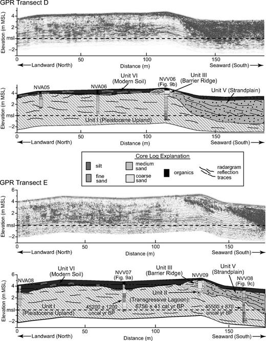 Ground-penetrating radar (GPR) transects D and E. Shown are the processed GPR parallel radargrams (top) and interpretations (bottom) across the northern Navegantes barrier ridge (site 4; see Figs. 3 and 5 for locations). Graphic core logs from auger cores (prefix NVA) and vibracores (NVV) and calibrated radiocarbon dates are shown. msl—modern mean sea level; m MSL—meters above modern mean sea level; yr B.P.—years before present; cal/uncal—calibrated/uncalibrated.