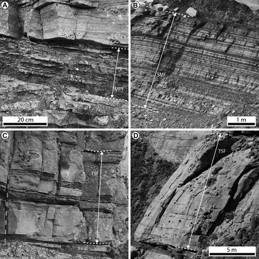 Facies of the GC channel fill. (A) Mudstone-prone facies (MPF). (B) Thinly interbedded sandstone and mudstone facies (SMF). (C) Thick-bedded sandstone facies (TSF). Jacob staff marked with 10 cm increments. (D) Thick-bedded sandstone bound by amalgamation surfaces (TSF).