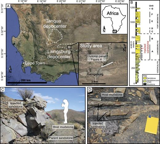 (A) Image of southwestern Karoo Basin with Tanqua and Laingsburg depocenters outlined and study area enlarged. Image from Google Earth. (B) Summary log of stratigraphy through Laingsburg depocenter and highlighted stratigraphic position of clastic injectites (Flint et al., 2011). Fm.—formation. (C) Typical example of a sill at outcrop. (D) Typical example of a small dike and sills at outcrop. Notebook for scale (13 × 20 cm).
