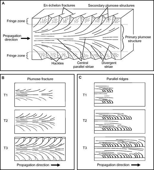 (A) Schematic block diagram depicting joint faces and features on a plumose fracture (adapted from Fossen, 2010). (B) Three time phases depicting formation of a single plumose fracture. (C) Three time phases depicting formation of parallel ridges with hackles.