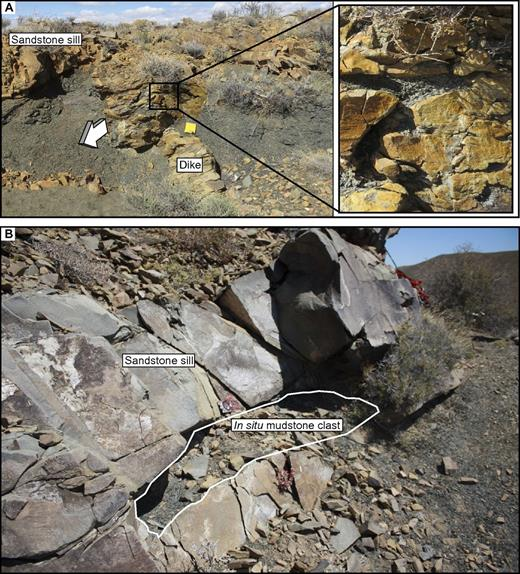 (A) Sill-to-dike transition zone, showing an area of in situ clasts at the sill-dike junction. Arrow represents injectite propagation direction. Notebook (13 × 20 cm) for scale. (B) Sill with an in situ mud clast >1 m in length; compass clinometer for scale. Figure 2 shows schematic views of the temporal development of these features.