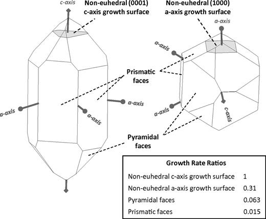 Illustration of the crystallographic axes for alpha quartz and the four surface types considered in the simulations. The relative rates of growth for different crystal growth surface types are those suggested by Lander et al. (2008).
