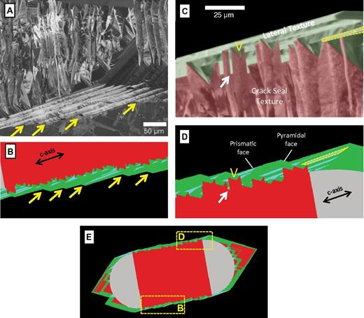 "Comparison of morphologies and textures for a natural quartz bridge with simulation results where the c axis is oriented at 80° from the fracture wall, and quartz growth rate is sufficient to span microfracture gaps. The color conventions from Figure 7 apply to the simulation results. (A) Scanning cathodoluminescence image of a quartz bridge from sample SFE3–9246 from the Travis Peak Formation in the East Texas Basin. The lower portion of the bridge shows distinct inflection points indicated by the arrows that are associated with zoned quartz that overlaps with and postdates crack-seal textures. (B) Zoomed-in view of simulation results for the area indicated in part E. The arrows show pyramidal crystal faces that are migrating along the length of the simulated bridge and appear to be analogous to morphology indicated by arrows in A. (C) High-magnification cathodoluminescence image of the natural quartz bridge where we have color coded the texture to indicate interpreted crack-seal (red shades) and ""laterals"" (green shades). The ""V"" label indicates the interpreted spanning position for cement that filled a microfracture gap. Lateral zones appear to originate in many cases from the top of crack-seal structures and to extend rightward along the bridge. The yellow dashed area shows one such zone. (D) Zoomed-in view of simulation results for the area indicated in E. The tops of crack-seal structures show a similar asymmetrical form as in C, as exemplified by area shown by the ""V"" label. The yellow dashed area extends rightward from the top of a crack-seal texture and shows a similar form and geometry to the dashed area outlined in C. (E) Zoomed-out view of the simulated region with the dashed lines showing the areas displayed in B and D."