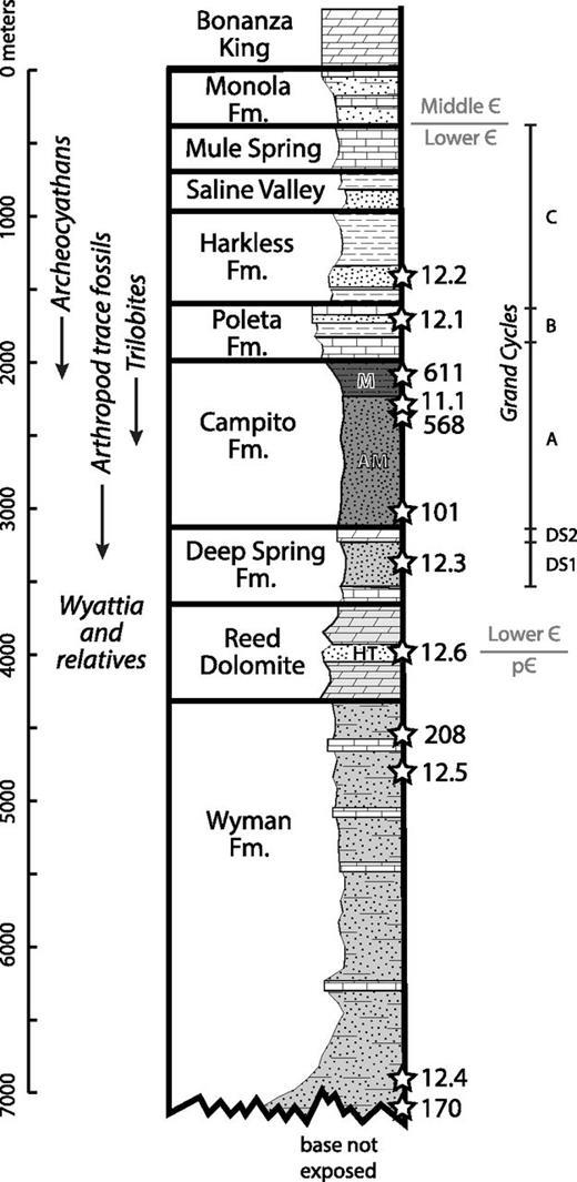 Detrital Zircon Geochronology Of Neoproterozoiclower Cambrian