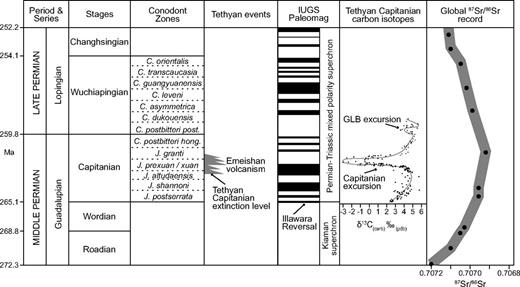 "Summary of Middle to Late Permian stratigraphy, Capitanian and Wuchiapingian conodont zones, the Tethyan δ13Ccarb record (after Wang et al., 2004; Bond et al., 2010b), the global 87Sr/86Sr curve (from Korte et al., 2006), and the International Union of Geological Sciences (IUGS) paleomagnetostratigraphic ""bar code,"" in which periods of normal and reversed polarity are shown as black and white intervals respectively. Ages of stage boundaries after Cohen et al. (2013). Placement of the Illawara reversal is after Isozaki (2009). Abbreviations for conodont zones and stage names as follows: J.—Jinogondolella; C.—Clarkina; prexuan/xuan—prexuanhanensis/xuanhanensis; hong—hongshuensis; post—postbitteri; GLB—Guadalupian/Lopingian boundary. The timing of Emeishan volcanism and the low-latitude Capitanian mass extinction is based on Wignall et al. (2009a). pdb—Peedee belemnite."