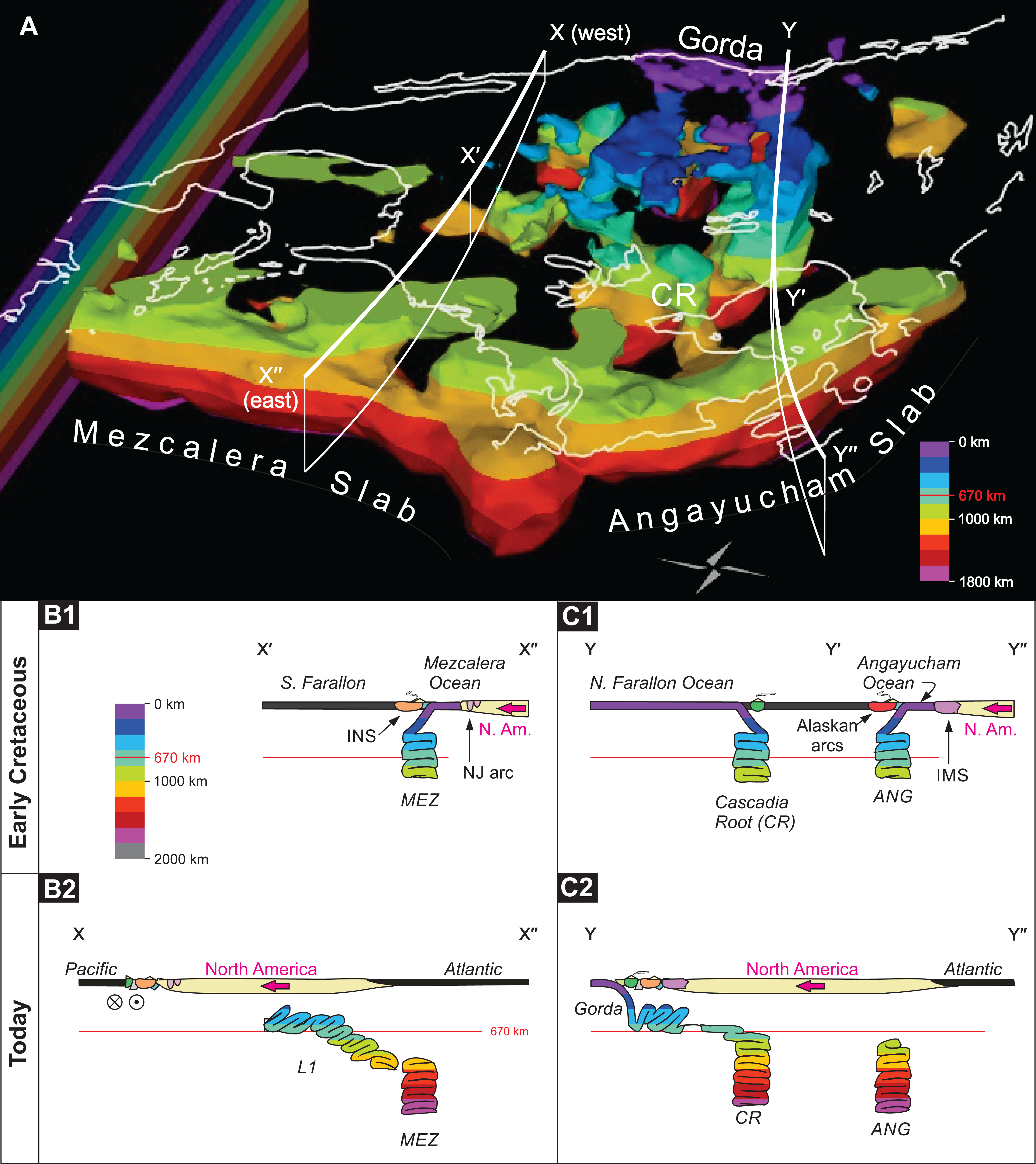 Mantle And Geological Evidence For A Late Jurassiccretaceous Suture