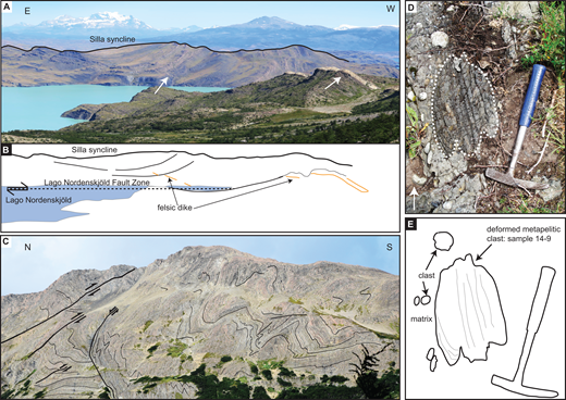 (A) Kilometer-scale open Silla syncline in the Cerro Toro Formation at Lago Nordenskjöld. View is from the base of Mount Almirante Nieto looking south. White arrows point to the dike indicated in B. (B) Schematic sketch of the Silla syncline as in A. The fold axis is truncated by a felsic dike. The Lago Nordenskjöld fault zone accommodates along-strike variation in the Silla syncline. The distance between the shore lines is 1.3 km. (C) Thrust-folded Punta Barrosa Formation at the Sierra Chacabuco/Cordillera Arturo Prat. Different styles of folding are observed: conjugate kink-bands, kink-like folds, and chevron folds. Outcrop length = ∼1 km. (D) Deformed metapelitic clast in the Cerro Toro conglomerate at the western limb of the Silla syncline. Sample 14-9. Hammer length = 28 cm. White arrow points stratigraphically upward. (E) Schematic sketch of D.