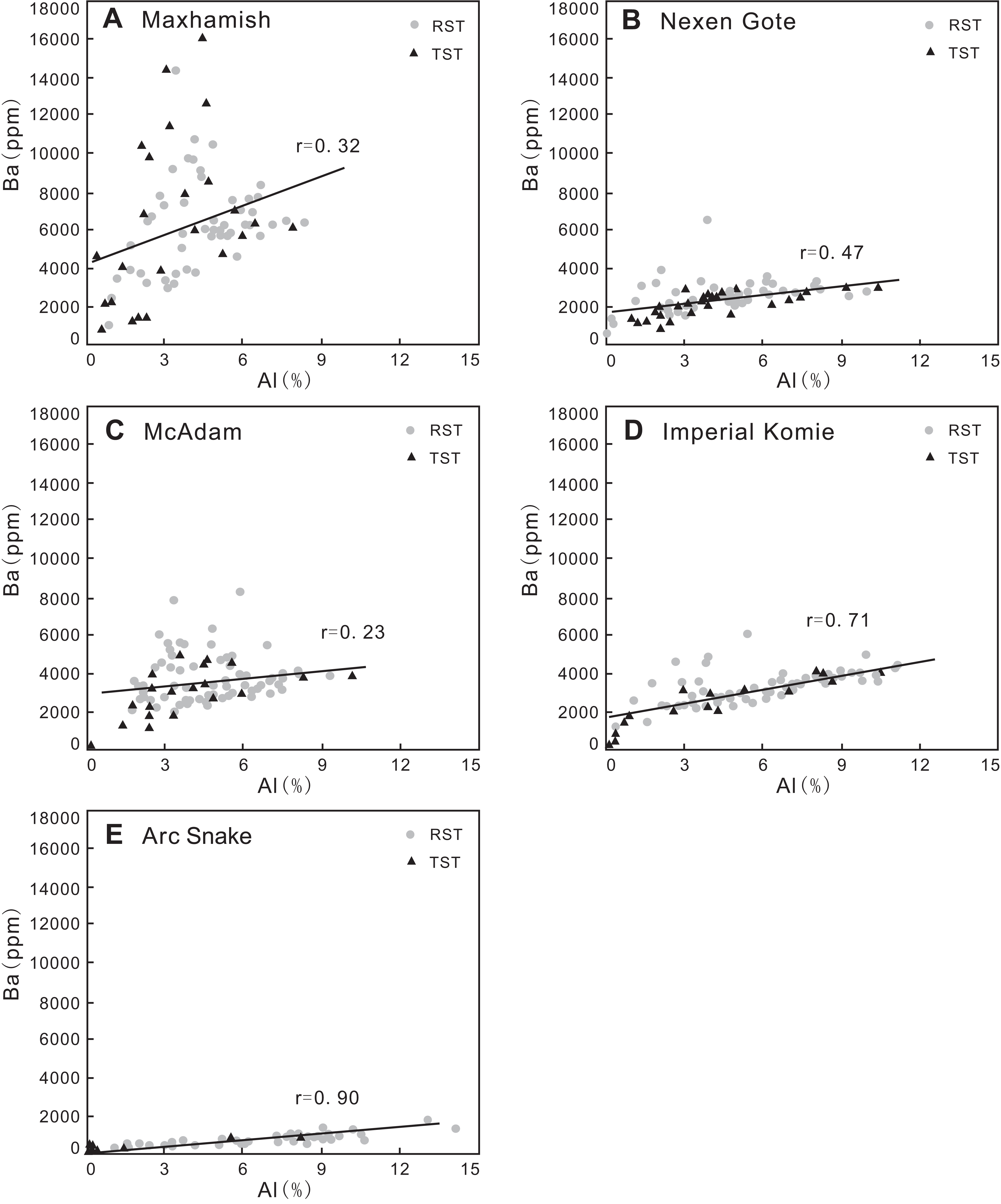 Relative sea-level cycles and organic matter accumulation in