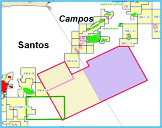 Outline of the survey of the Santos and Campos Basins (red). The brown line running diagonally across the survey from the upper left to the lower right represents the division between Santos (left) and Campos (right) Basins.