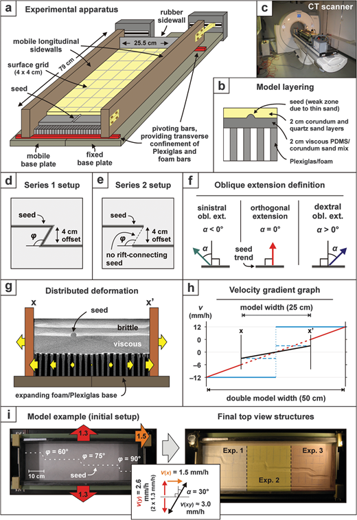 Model setup. (a) Cut-out view of the experimental apparatus depicting its various components. (b) Compositional layering of quartz and corundum sand representing the brittle upper crust and a viscous silicone/corundum sand mixture simulating the ductile lower crust, above a Plexiglas and foam base. (c) Experimental apparatus in the CT scanner during a model run. (d and e) Seed geometry setup for our two model series with a secondary rift-connecting seed (series 1) and without a secondary seed (series 2). (f) Extension obliquity definition for our model series. (g) Distribution basal deformation in the model. As the sidewalls move apart with 3  mm/h, a velocity gradient develops in the foam and Plexiglas base (yellow arrows). The CT image is derived from model B (compare with Figure 6). Layering in the sand is due to the alternations of quartz and corundum sand with different densities. (h) Velocity gradient due to the distributed basal deformation in our setup. The standard 3  mm/h velocity gradient for the normal model width (black line) would have to be quadrupled for a model with double dimensions (red line). However, as our models with double layer thickness have the same width as our standard models, the velocity should only be doubled to obtain the correct velocity gradient (dotted red line). The model velocity is kept at 3  mm/h for the CT-scanned models, but as explained in the text, the model structures are still comparable. For comparison, the blue lines show the velocity profile for basal plate setups with a normal thickness (dotted blue line) and a double thickness (continuous blue line). (i) Example of a model run. (Left) Initial setup of three separate experiments in one model run (without sand cover). (Right) Final surface structures.