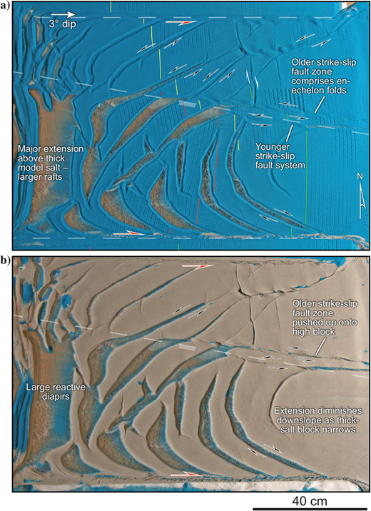 Model 5 (a)overhead view and (b)overhead view after overburden removal. Again, deformation above the thin salt consists of relatively long oblique structures with synthetic and antithetic sense of shear with the strike-slip fault zones that formed because of the basement step. Less extension is observed above thick salt as compared to the transtensional model. Oblique convergence across the transpressional basement step offsets the original strike-slip zone up onto the high block. Note the differences in downdip translation as indicated by the offset grid markers.