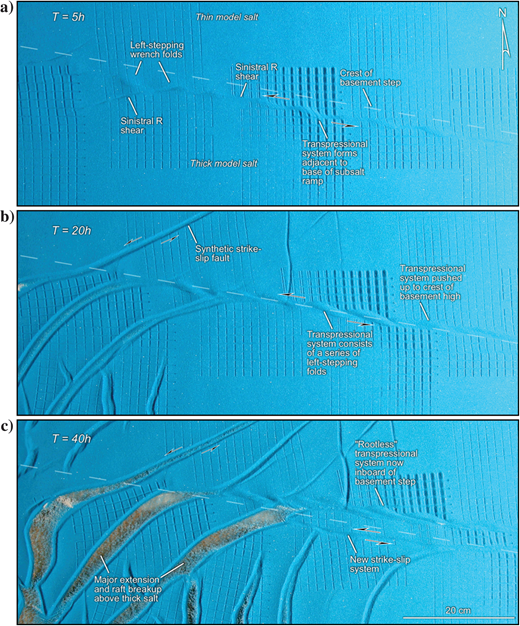Overhead views illustrating the evolution of the central part of model 5 at (a)5, (b)20, and (c)40h runtime. A series of en-échelon folds and linking faults defined the strike-slip zone at the early stages as shown in (a). This fold array is formed adjacent to the base of the step because of the slight degree of convergence across the subsalt step. With the increasing deformation, the transpressional fault system is more clearly defined as a series of left-stepping folds that moved up to the crest of the subsalt ramp as shown in (b). After 40h, the original fault system is now a rootless fault zone sitting atop the basement high, and a new strike-slip system has begun to form adjacent to the base of the subsalt ramp as shown in (c).