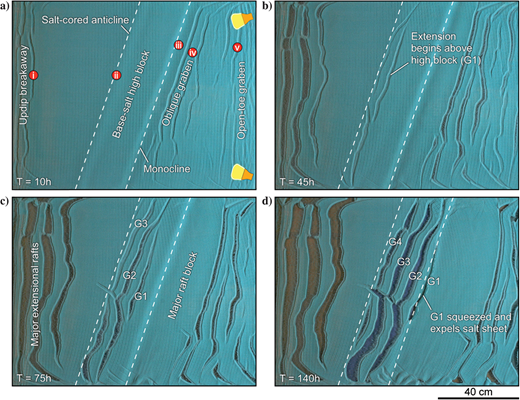 Overhead views illustrating the evolution of model 6. The model setup is illustrated in Figure3. (a)After 5h, five distinct structural zones are seen in the overhead views and strain maps: (1)an updip breakaway zone with extensional structures almost orthogonal to model dip, (2)a poorly defined salt-cored anticline parallel to the updip edge of the basement high (see Figure16 for strain map), (3)a topographic hinge or monocline that marks the downdip edge of the base-salt high block, (4)an oblique extensional system that parallels the downdip edge of the base-salt high block, and (5)open-toe extension structures orthogonal to model dip. Panels (b-d) show overhead views at 45, 75, and 140h into the model runtime. The updip extension within the breakaway zone broadens with time, forming major raft blocks. The site of early contraction above the base-salt high block was superseded by extension; these oblique graben were gradually translated downdip and squeezed and expelled salt sheets as they moved into thicker salt at the downdip edge of the base-salt high.