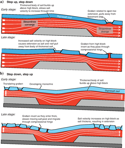 Synoptic figure explaining the temporal evolution of salt flow on overburden deformation. (a-b) In a step-up/step-down scenario, initial compressional thickening of salt occurs on the updip side of the high block because of the flux mismatch. This salt thickening allows salt velocity to increase through time as the effects of basal drag are minimized. The increased velocity eventually results in extension as salt and its overburden pull away and collapse under extension. At the downdip edge of the high block, rapid extension initially occurs because of the flux mismatch, proximity of the open toe, and lack of a buttress in this location. Graben formed during collapse of the thickened body of salt are extended farther as they pass through the extensional hinge and then are inverted as they pass through the compressional hinge. (c and d) In a step-down/step-up scenario, a monocline develops as material translates into the thickened salt. Diapirs formed updip are gradually translated toward the low block. At a later stage, the translating graben are inverted as they pass through the extensional hinge once they enter thick salt. On the downdip side of the low, a thickened body of salt builds up above the high block. This thickened body of salt at the downdip edge of the low eventually collapses under extension as the salt velocity increases through thickening to overcome the basal friction.