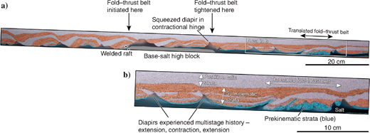 (a)Cross section and (b)magnified view through model 9. The model setup is identical to that of model 7, except for the addition of synkinematic layers as seaward-thinning wedges during the model runtime. The model cross section is dominated by extensional structures, but a buried fold and thrust belt can be seen at the right of the section, far downdip from the base-salt high block that initiated and amplified this structure. This fold-thrust is analogous to the Albian fold belt found in the Campos Basin example in Figure24.