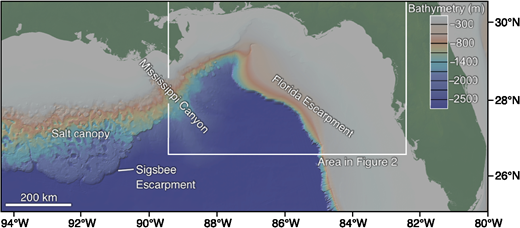 Bathymetric map of the northeastern Gulf of Mexico. Data are from the GeoMapApp and the Global Multi-Resolution Topography (GMRT) synthesis.