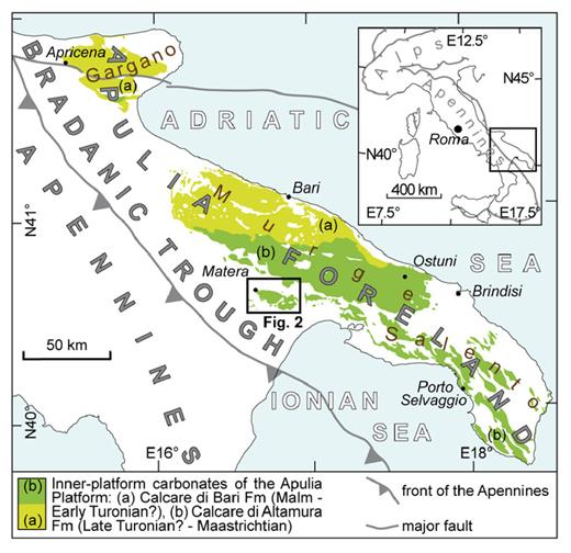 Outcrops in the Apulia Foreland (southern Italy), of the innerplatform carbonate rocks belonging to the Apulia Platform (modified after Ciaranfiet alii, 1988, Tropeanoet alii, 1997, and Spallutoet alii, 2005).