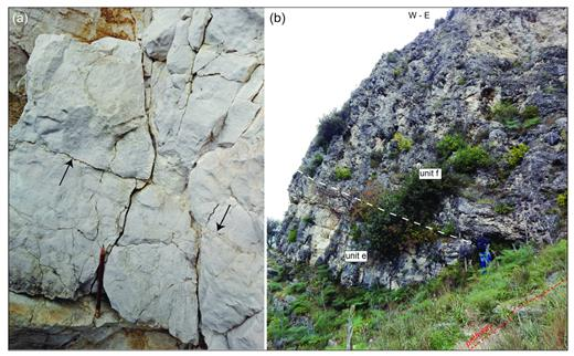 "(a) Detail of the greyish/whitish wackestone belonging to unit e; the arrows point to some stylolitc surfaces. (b) View of an outcrop of unit e, covered by unit f, near the pathway connecting Madonna delle Vergini rupestrian church to the ""Gravina di Matera"" stream (i.e., ""Torrente Gravina di Matera""; see main map for the location); the sharp stratigraphic contact between these two units is indicated by the dashed line."