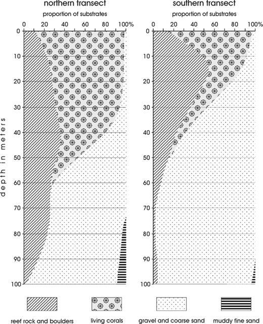 Depth coenoclines and environmental considerations of western proportion of substrate types at two transects nw off sesoko island fandeluxe Images