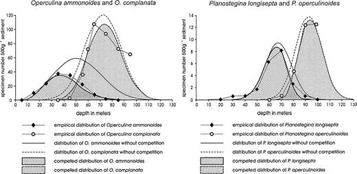 Depth coenoclines and environmental considerations of western competition between operculina ammonoideso complanata and between planostegina longiseptap fandeluxe Images