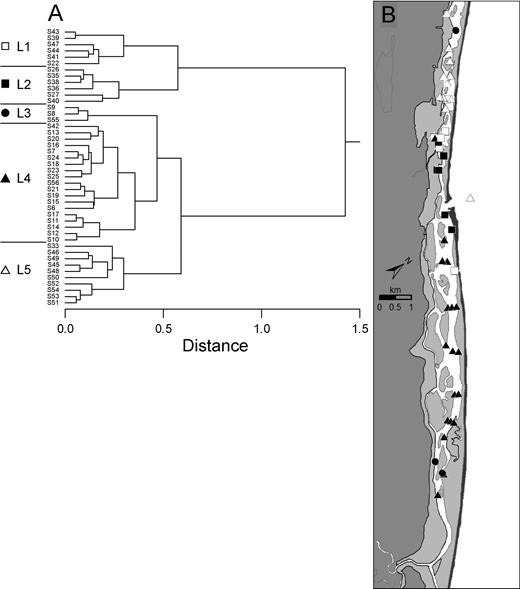 A Cluster analysis dendrogram of live foraminiferal populations indicates five biofacies. B Distribution of live foraminifera cluster groups (biofacies) defined in A; see A for key to symbols.