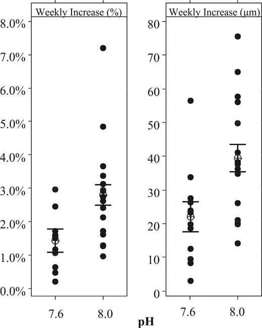 Mean weekly increase in diameter of Archaias angulatus by cohorts, grouped by pH level (n = 29). Weekly increase in diameter as a percentage of the original size and as an increase in μm are shown separately. Bars represent one standard error from the mean.