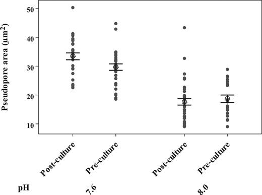 Mean Archaias angulatus pseudopore size (μm2) before and after six weeks of culture, by pH treatment (control 8.0, treatment 7.6). Bars represent one standard error from the mean.