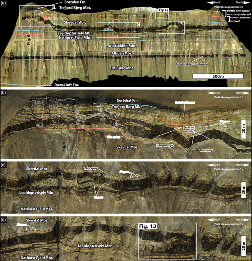 Intrusion geometries and features in brittle homogeneous sandstone (b) and poorly cemented sandstone (c, d). (a) Overview of the area around Log 2 (see Fig. 5 for location). Noteworthy features are the tabular sill propagating in the Albuen Member mudstone, the regular buckling of the upper sill into the poorly cemented Skevdal Member (c, d), and the complex, divergent splays developed where the upper sill transgresses into the well-cemented, homogeneous sandstones of the Trefjord Bjerg Member (b). (b) Complex splaying geometries in the homogeneous, sandy Trefjord Bjerg Member, and simpler splays and peperitic margins in the underlying, poorly cemented sandstone of the Skevdal Member. (c) Sill propagating along the interface between the well-cemented Lepidopteriselv Member and the overlying, poorly cemented Skævdal Member. The abundant fingers and peperitic structures developed in the poorly cemented sandstones, indicating magma propagation in a partly non-brittle host rock, should be noted. (d) Another example of sill geometries in poorly cemented sandstone. The well-developed broken bridge, which is presented in further detail in Figure 13, should be noted.