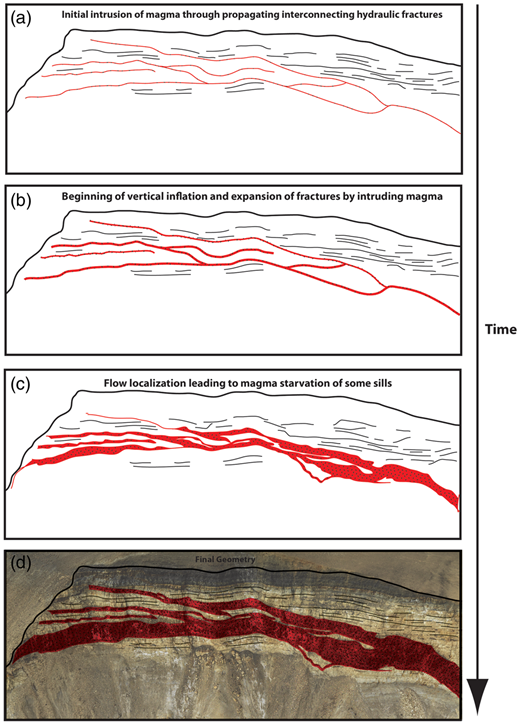 Evolution of sills and splays through gradual inflation of interconnected fractures. (a) Initial intrusion of magma through propagating interconnected hydraulic fractures. (b) Beginning of vertical inflation of fractures by intruding magma. (c) Further inflation of sills. Flow localization leads to magma starvation in some sills, and greater inflation of more well-connected sills. (d) Further inflation of sills and final geometry.